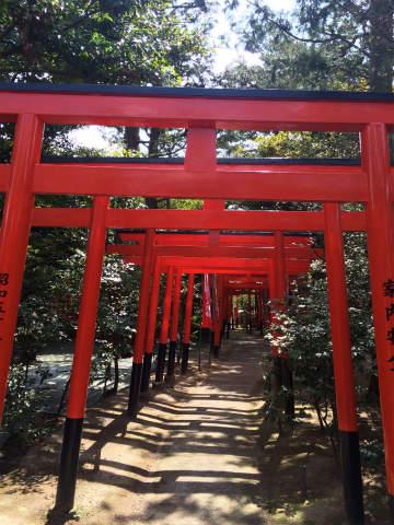 開運!神社ツアーに参加!!田無神社と東伏見稲荷神社にご参拝。神社作法も学びました!!