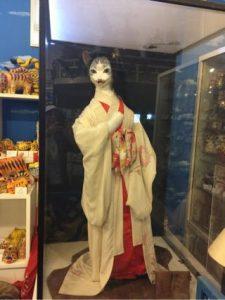 猫の博物館は猫科動物研究所でもある伊豆高原の変わりダネ博物館