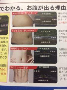 メタボ治療・予防に効く!お腹ソムリエによるお腹診断体験レビュー
