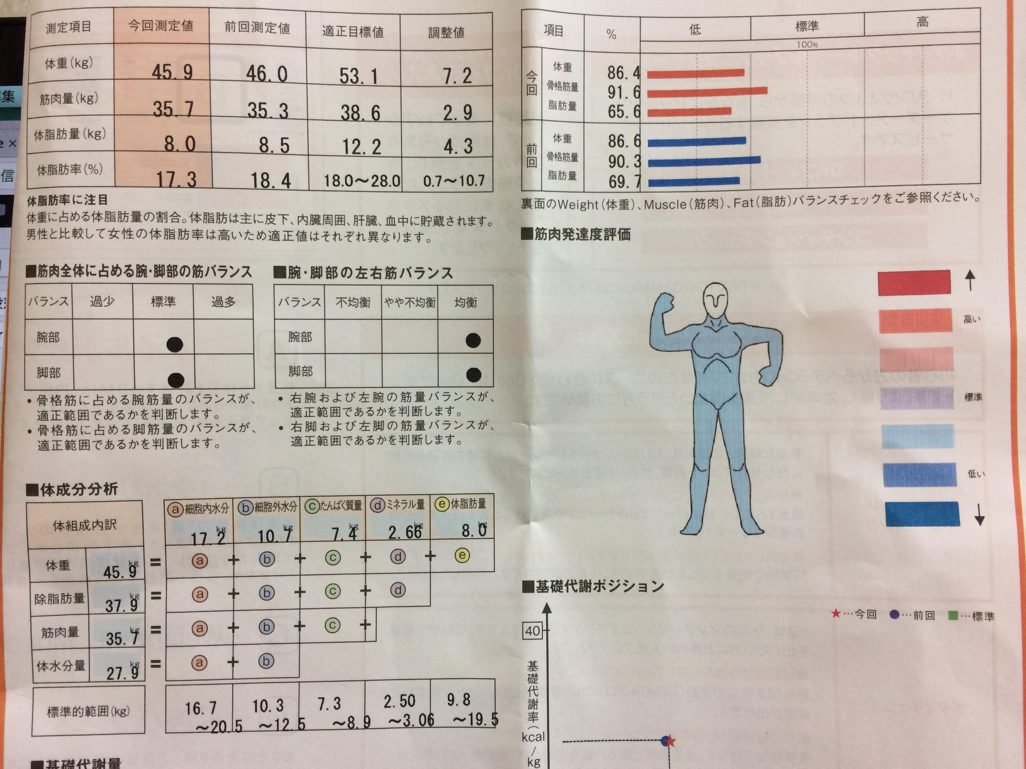 50歳からの体組成改善:「隠れ肥満」が「太りにくい理想の体」に(アラ還マラソン練習日記番外編)