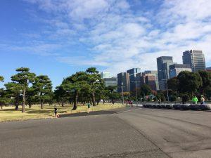 アラ還マラソン練習日記・サブ4.5を狙う(17) 茂庭っ湖マラソンはあさって。仕上げは?