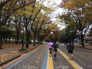 アラ還マラソン練習日記ツーリング前の14キローおもいがけずいい練習ができた日!こんな日もある